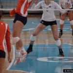 NCAA volleyball season opens-buytape.com